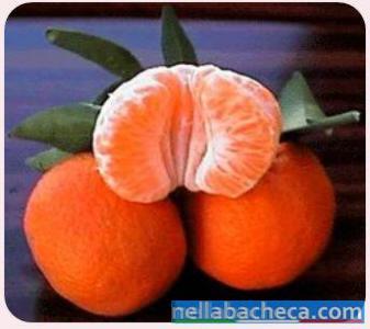 Clementine calabresi della Piana di Sibari