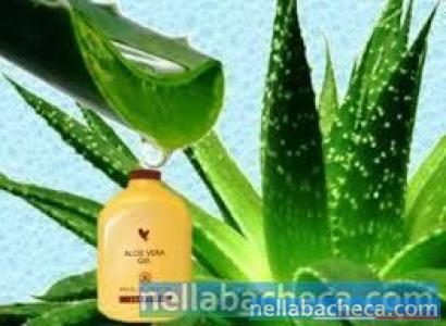 Prodoti naturali a base di Aloe Vera per la salute,il benessere,la bellezza,e gli animali