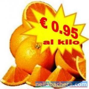 "Arance calabresi varietà ""tarocco"" ad €0.95 kilo"