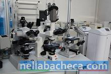 Vendesi laboratorio analisi cliniche e chimiche
