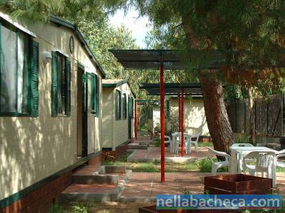 Camping Village Vieste Marina *** - Gargano